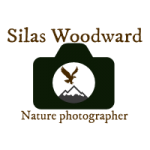 Profile picture of Silas Wood